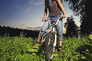 BMX bike on grass